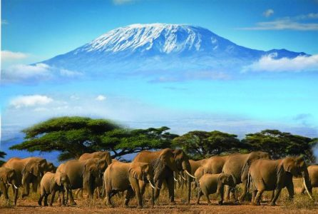 3 Day Amboseli Road Safari